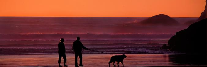 Hundeurlaub Dänemark